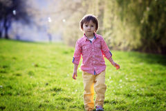 Little boy, running in the park, chasing soap bubbles, nice back Royalty Free Stock Photography