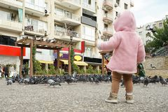 The little boy he`s baiting of pigeon Street. The little boy he`s baiting of pigeon Street stock photography