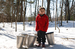 Little boy with sap buckets in a snowy spring fore Royalty Free Stock Photo