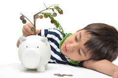 Little boy saving money in piggy bank money Stock Images