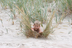 Little boy  in seagrass Stock Photo