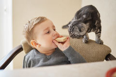 Little boy shares food with cat stock image