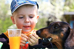 Little boy sharing cookie with a dog Royalty Free Stock Photos