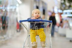 Little boy in the shopping cart Royalty Free Stock Image