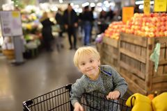 Little boy with shopping cart in a food store or a supermarket royalty free stock photo