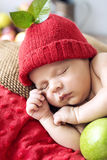 Little boy during a short nap Stock Image
