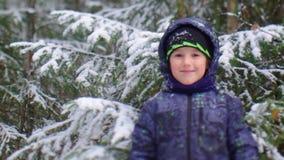 Little boy stock video footage