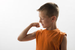 Little boy showing his muscles. White background Royalty Free Stock Image