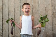 The little boy shows off a beet that he helped grow his mother in the garden. The concept of environmentally friendly rural settle. Ments and organic products Stock Photos