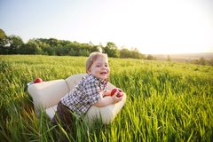 Little boy sits in chair Royalty Free Stock Image