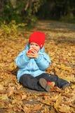 Little boy sitting on the autumn leaves Stock Photos
