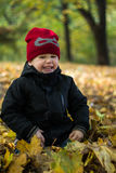 Little boy sitting in autumn leaves, laughing, looking slyly, Stock Image
