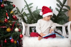 Little boy, sitting on a bench under christmas tree, eating choc Royalty Free Stock Image
