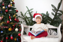 Little boy, sitting on a bench under christmas tree, eating choc Royalty Free Stock Photo