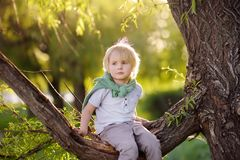 Little boy is sitting on a branch of tree and is dreaming. Child`s games. Active family time on nature. Hiking with little kids. Little boy is sitting on a royalty free stock photography