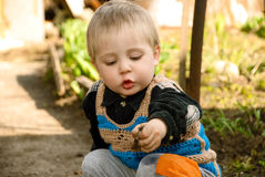 Little boy sitting in the garden. Stock Image