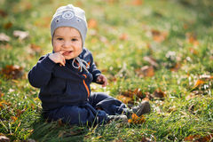 Little boy sitting on the grass Royalty Free Stock Photo