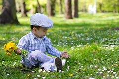 Little boy, sitting on the grass with dandelions royalty free stock photo