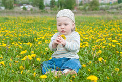 A little boy sitting on green grass on meadow Royalty Free Stock Photos
