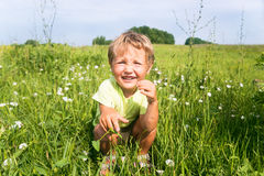 Little boy sitting in green grass in the meadow Stock Photos