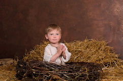 Little boy sitting in nest of twigs Royalty Free Stock Images