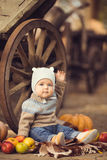 Little boy sitting outdoors in the village. Pumpkins and apples around Stock Photo