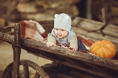 Little boy sitting outdoors in the village. Pumpkins and apples around Stock Image