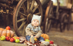 Little boy sitting outdoors in the village. Pumpkins and apples around Stock Photography