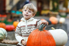 Little boy sitting on pumpkin patch Royalty Free Stock Images