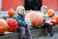 Little boy sitting on pumpkin patch Stock Photography