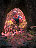 Little boy sitting in the roots of a tree Stock Images