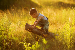 Little boy sitting on a snag. In the grass field stock photos