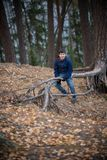 A little boy sitting on a tree root in the forest stock image