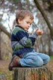Little boy sitting on the  tree stump Royalty Free Stock Photography
