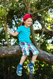 Little boy sitting up a tree Royalty Free Stock Photography