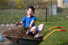 Little boy sitting in a wheelbarrow Royalty Free Stock Images