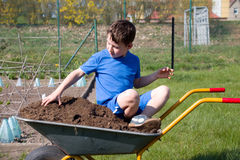 Little boy sitting in a wheelbarrow Royalty Free Stock Photos
