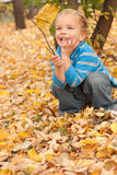 Little boy sitting on yellow autumn foliage. Stock Photos