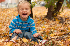 Little boy sitting on yellow autumn foliage. Stock Photo