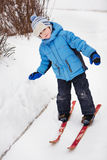 little boy on skis. winter's day Stock Image