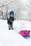 Little boy sledding in snow forest Royalty Free Stock Photography
