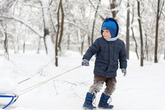 Little boy sledding in snow forest Stock Photo