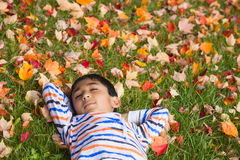Little Boy Sleeping on Autumn Leaves Royalty Free Stock Photography