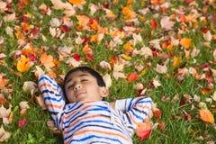 Little Boy Sleeping on Autumn Leaves. Little Boy Sleeping on a Bed of Colorful Autumn Leaves Royalty Free Stock Photography