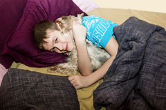 The little boy is sleeping in the bed with a small dog Stock Images