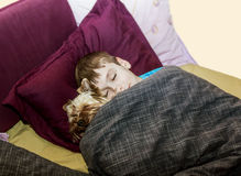 The little boy is sleeping in the bed with a small dog. Yorkshir terrier Royalty Free Stock Photography