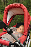 Little boy sleeping in pram. Little boy sleeping in a pram and having rest in the middle of forest Stock Photo