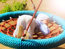 Little boy is sleeping on a swing in the park Stock Images