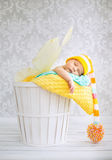 Little boy sleeping in the wicker basket Royalty Free Stock Image