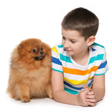 Little boy with a small dog Stock Photo